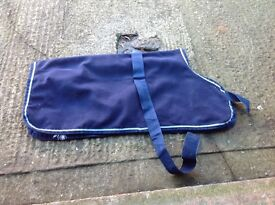 Large dog coat , possible free delivery