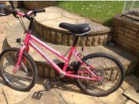 "20"" Girl's Bike"