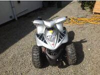 Quad bike Apache RLX110