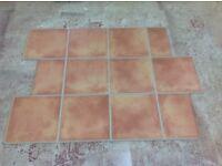 Laminate flooring kitchen terracotta