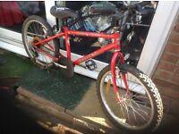 Boy or Girls Dawes Mountain Bike 6 speed(age 5-8