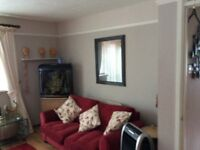 Two Matching Large 2 Seater Sofas One is Bedsettee 2.5 yrs Old VGC