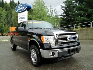 2014 Ford F-150 XLT 4WD - One Owner- Fully Serviced!