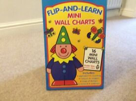 Flip and learn mini wall chart/spiral bound book