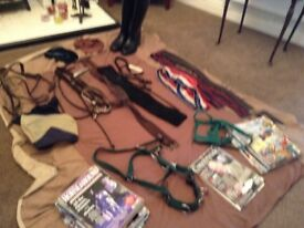 Clear out of some horsey bits'bobs