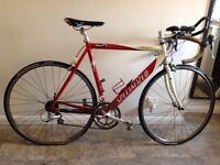 2000 Specialized Alley A1 Sport triathlon/road bike
