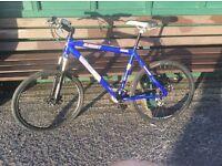 Bike for phone