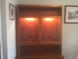Wood display cabinet with lights and glass shelving