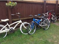 Job lot of bikes,spares and repairs open to offers some are fine some need little work