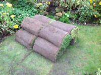 10 rolls of high quality lawn turf
