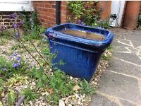 Very big blue pot