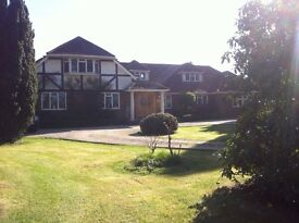 Elegant Furnished Double Room in a large detached residence with stunning garden window views.