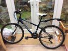 Junior bicycle Dawes Tracker