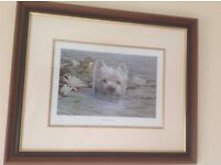 West Highland Terrier Framed Limited edition print by Paul Doyle.