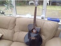 Daisy rock electro acoustic girls guitar wigan