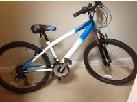 Boys Raleigh Hot Rod Mountain Bike