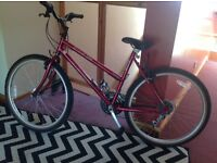 IMACULATE condition ladies bike