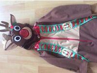 Children's reindeer 5-6 years old fancy dress costume
