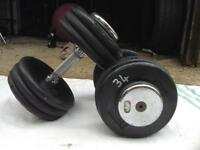 2 x 34kg SFL Rubber Dumbbell Weights