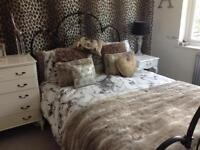 Pretty Black Metal Double Bed Frame
