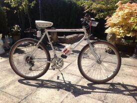 Dawes mountain bike £60