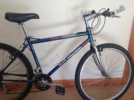 Hard Rocx Rock Machine Mountain Bike