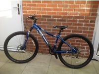 Specialized Myka pro women's lady's blue bike collection from Morpeth excellent condition serviced