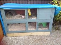 2 Guinea pigs and a large 2 tier hutch