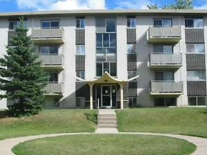 Hugo Apartments - 2 bedroom Apartment for Rent
