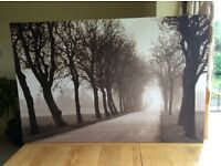 Large IKEA canvas picture