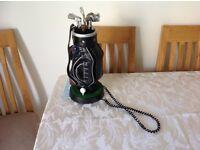 Working, unusual golf bag telephone