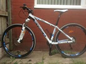 Whistle Patwin 29er