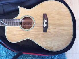 Lindo Slim SE Electro Acoustic Guitar Padded Case BARGAIN