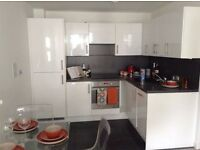 SB Lets are delighted to offer this fresh, modern fully furnished two bedroom flat in Brighton