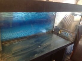 4ft fish tank with black ash cabinet housing a glass sump inside