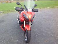 2009 Triumph tiger 1050