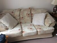 Comfortable sofa that seats 3 or 4 and an armchair