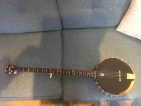 Vega Wood Song Long Neck Banjo in excellent condition