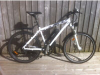 Burisch Synergy GT250 Electric Mountain Bike