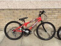 Teens Falcon Mountain Bike for Sale and X Rated Bmx
