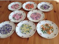 Bradford Exchange Collectable Plates - Buyer collects