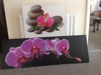 Wall hanger orchid pictures