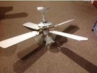 White and gold ceiling fan with triple lights. Reversible fan