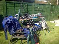 Sea, carp and coarse fishing sets
