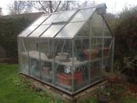 8ft X 6ft Glass Greenhouse. ***MUST GO ASAP ***