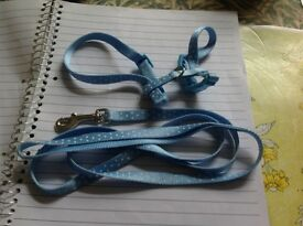 New dog lead - harness - and other items (new)