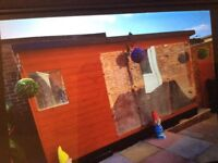 Large AVIARY 5 months old £450 ovno