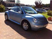 VW Beetle Hood Cover