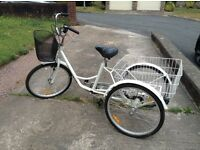 Fab adult trike tricycle 3 wheel bike used only twice great working order.
