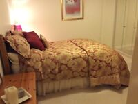 Red/Gold bedding